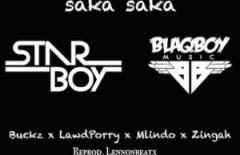 BlaqBoy - Saka Saka ft. DJ Buckz, DJ Maphorisa, Mlindo The Vocalist & Zingah